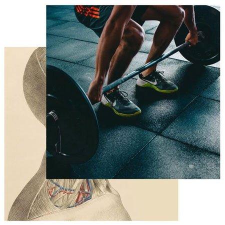 Fitness en Fysio bij Prima Life